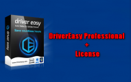 DriverEasy Professional + License