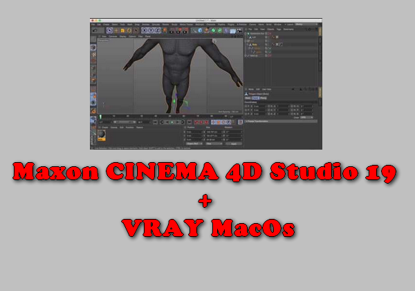 Maxon CINEMA 4D Studio 19 + VRAY MacOs Torrent