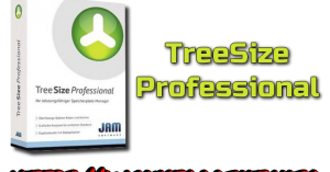 TreeSize Professional Torrent