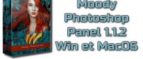 Moody Photoshop Panel 1.1.2 Torrent Win et macOS