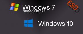 Windows 7 e 10 português-BRASILEIRO Torrent