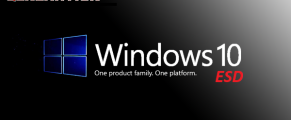 Windows 10 Pro Redstone 5 X64 MAR 2019 Torrent