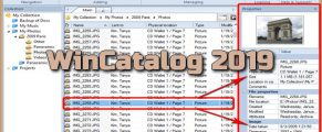 WinCatalog 2019 Torrent
