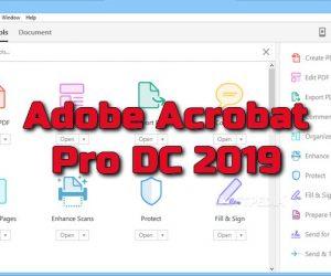 Adobe Acrobat Pro DC v2019 Torrent