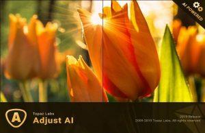 Topaz Adjust AI 1.0.5 Torrent