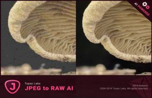 Topaz JPEG to RAW AI Torrent