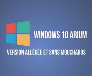 Windows 10 ARIUM Entreprise LTSC 2019