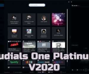 Audials One Platinum 2020 Torrent