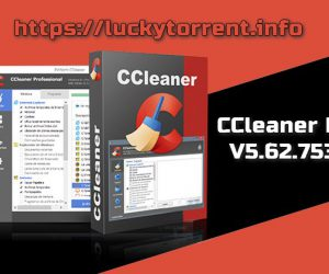 CCleaner Professional v5.62.7538 Torrent