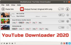 MediaHuman YouTube Downloader 2020 Torrent