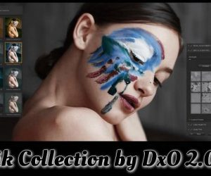 Nik Collection by DxO 2.0.8 Torrent