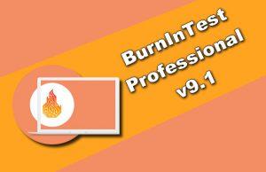 BurnInTest Professional v9.1 Torrent