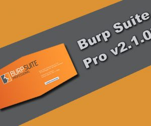 Burp Suite Professional v2.1.07