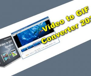 Video to GIF Converter 2020