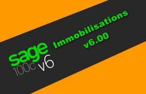 Sage 100C Immobilisations v6.00 Torrent
