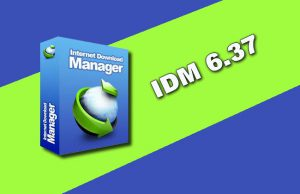 IDM 6.37 Torrent