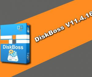 DiskBoss V11.4.16 Torrent
