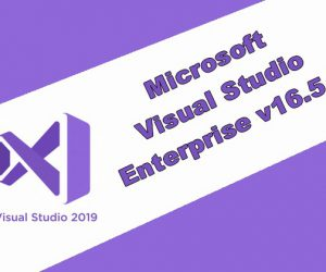 Visual Studio Enterprise 2019 Torrent