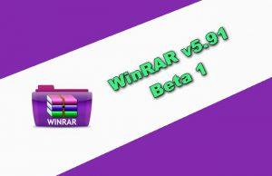 WinRAR v5.91 Beta 1