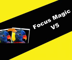 Focus Magic 5