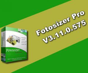 Fotosizer Pro v3.11.0.575 Torrent