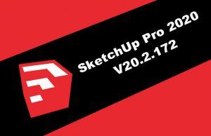SketchUp Pro 2020 v20.2.172