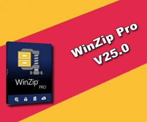WinZip Pro 25.0 Torrent