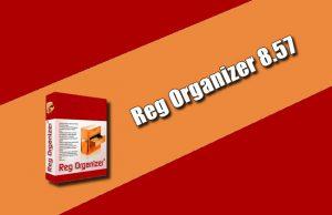 Reg Organizer 8.57 Torrent
