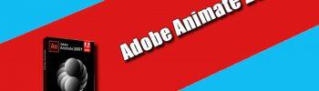 Adobe Animate 2021