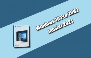 Windows 10 Pro 20H2 janvier 2021