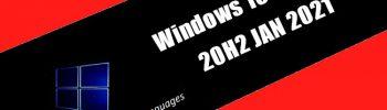 Windows 10 X86 Pro 20H2 JAN 2021