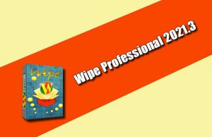 Wipe Professional 2021.3 Torrent
