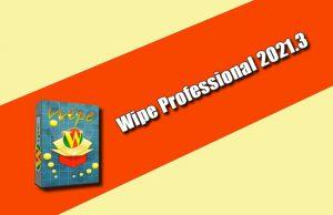 Wipe Professional 2021.3 Torrent