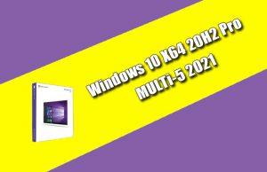 Windows 10 X64 20H2 Pro MULTi-5 2021