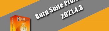 Burp Suite Professional 2021.4.3