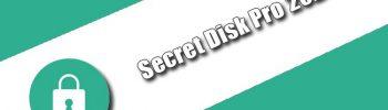 Secret Disk Professional 2021