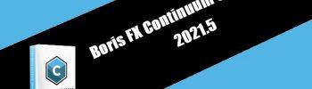 Boris FX Continuum Complete 2021.5